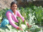 Investing in women farmers
